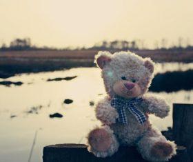 plush teddy bear Stock Photo 02