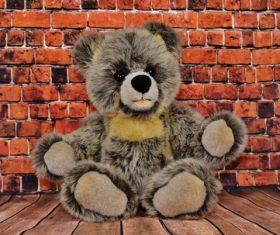 plush teddy bear Stock Photo 04