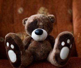 plush teddy bear Stock Photo 06