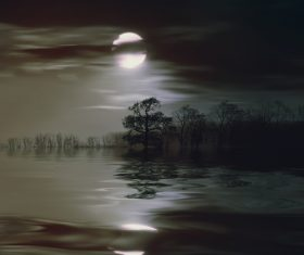 Black picture reflection of moon and trees in the water Stock Photo