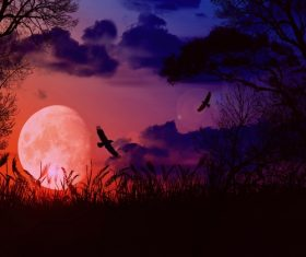 Bright round moon with dark clouds and flying crows Stock Photo