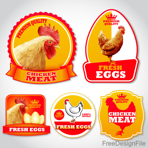 Chicken eggs labels stickers vector