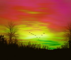 Colorful sky and a flock of flying birds Stock Photo