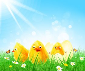 Cute chick with green grass and sunlight vector