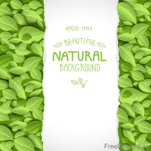 Eco style background with leaves