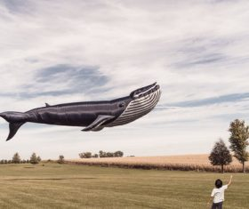 Floating Whale Kite Stock Photo
