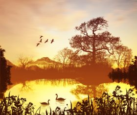 Flying birds and lake swans in the sunset sky Stock Photo