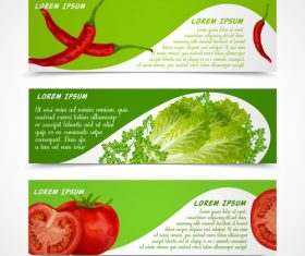 Fresh vegetable banners vectors material 2