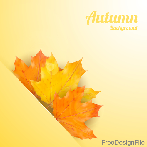 Golden autumn background with maple leaves vectors 04