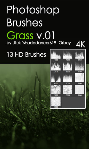 Grass HD Photoshop Brushes