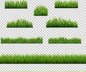 Green grass borders vector illustration 01
