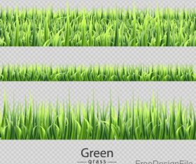 Green grass borders vector illustration 02