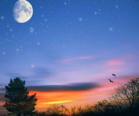 Moon and birds at sunrise Stock Photo
