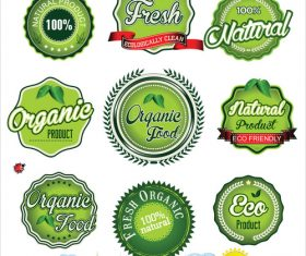 Natural eco green label vector collection