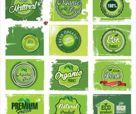 Natural green label collection vector