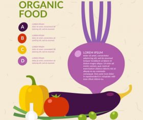 Organic food infographic vectors 02
