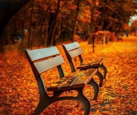 Outdoor benches Stock Photo 02