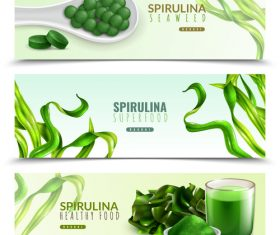 Realistic spirulina banners vector