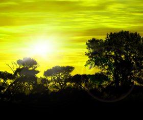 Sunrise sun glare Stock Photo
