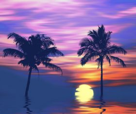 Sunset and reflection of coconut trees on the sea Stock Photo 02