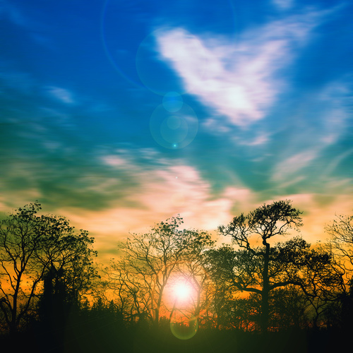 The halo and the woods of the sun at sunrise Stock Photo