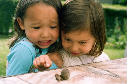 Two little girls scared by snails Stock Photo