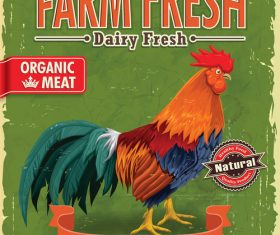 Vintage farm chicken poster template vector