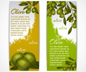 Vintage olives vertical banner vector