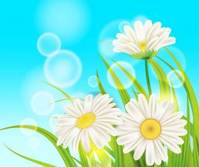 White chamomile with spring background vectors 03