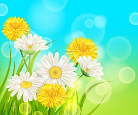 White with yellow chrysanthemum spring vector 02