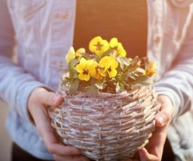 Woman holding a woven basket Stock Photo 02