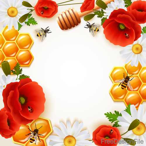 honey and flower with bee frame vector