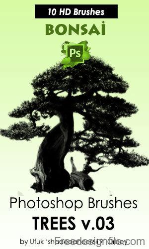 Bonsai Trees HD Photoshop Brushes