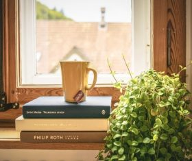 Book cup with green plants Stock Photo