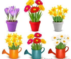 Colouful flower and flower pot vector