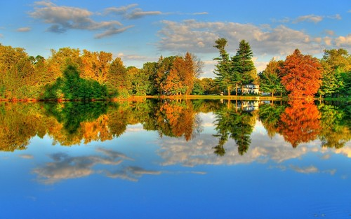 House lake trees reflection in the water Stock Photo
