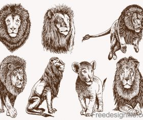 Lion skecth design vectors 01