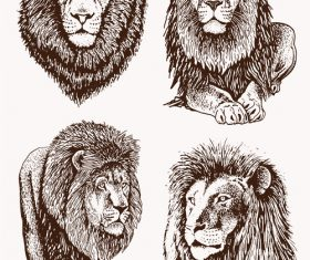 Lion skecth design vectors 04