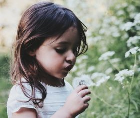 Little girl looking at flowers Stock Photo