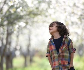 Lively little boy Stock Photo 03
