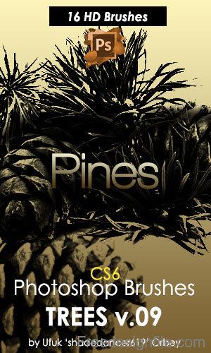 Pine Trees HD Photoshop Brushes