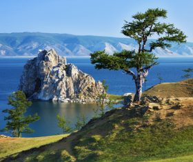 Pine trees and rocks on the hillside Stock Photo