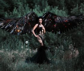 Pretty girl-demon with black wings Stock Photo 01
