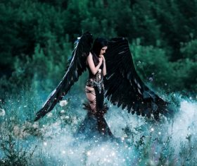 Pretty girl-demon with black wings Stock Photo 02