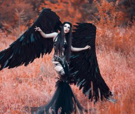 Pretty girl-demon with black wings Stock Photo 04