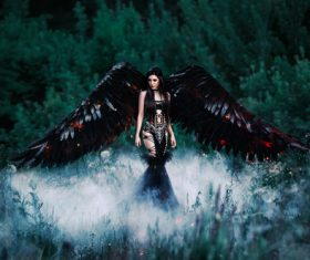 Pretty girl-demon with black wings Stock Photo 08