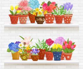 Shelf flower illustration vector