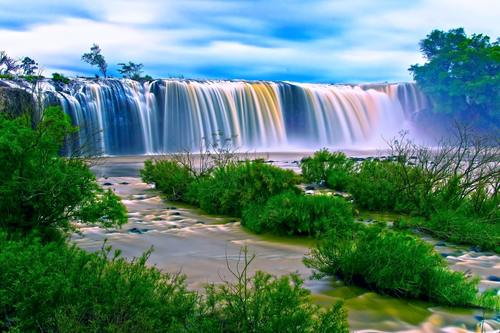 Trees grass waterfall natural scenery Stock Photo