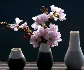 Vase cherry blossom flower arrangement Stock Photo