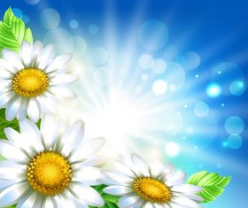 White flower with spring background art vector 02